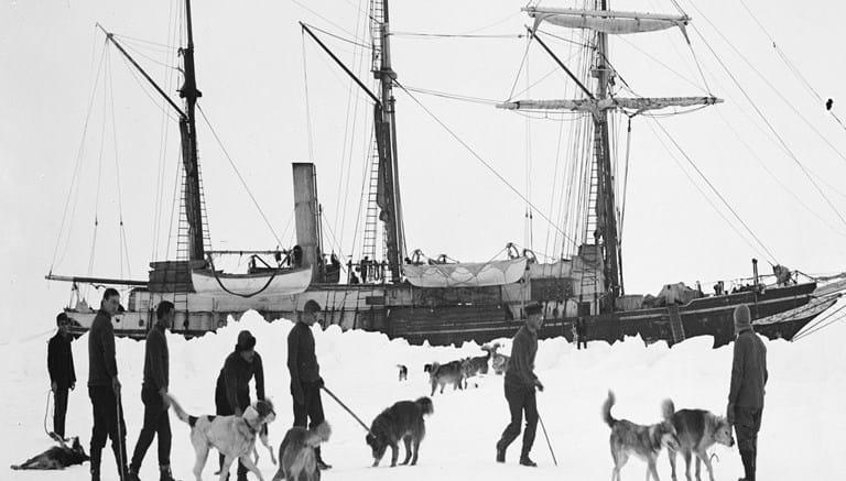 """Image result for shackleton dog sled pictures"""""""