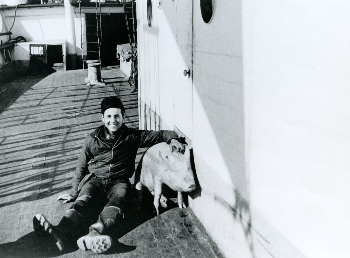 'Eric Newby with one of the pigs', 1938